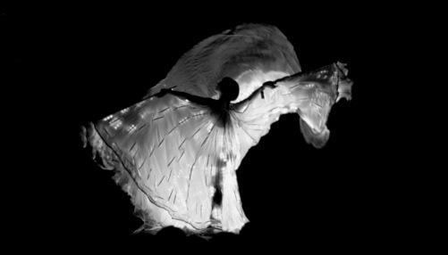 Vicky Butterfly-photograph by Mat Ricardo-2