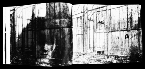 Deborah Turbeville-Past Imperfect-Steidl books-Afterhours Sleaze and Dignity-3